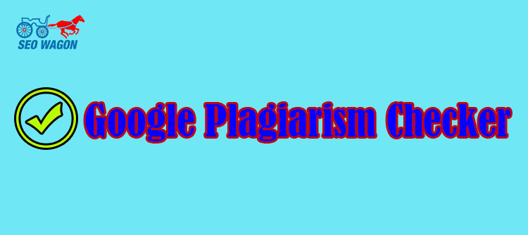Google Plagiarism checker